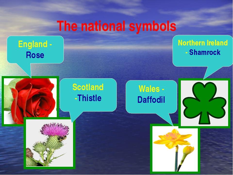 The national symbols England - Rose Northern Ireland - Shamrock Scotland -Thi...