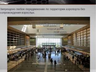 Запрещено любое передвижение по территории аэропорта без сопровождения взросл