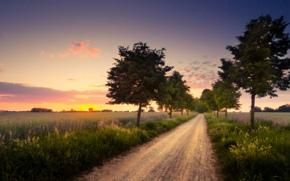 Обои природа, вечер, закат, поля, деревья