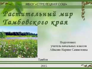Растительный мир Тамбовского края МБОУ «СТРЕЛЕЦКАЯ СОШ» Подготовил: учитель н