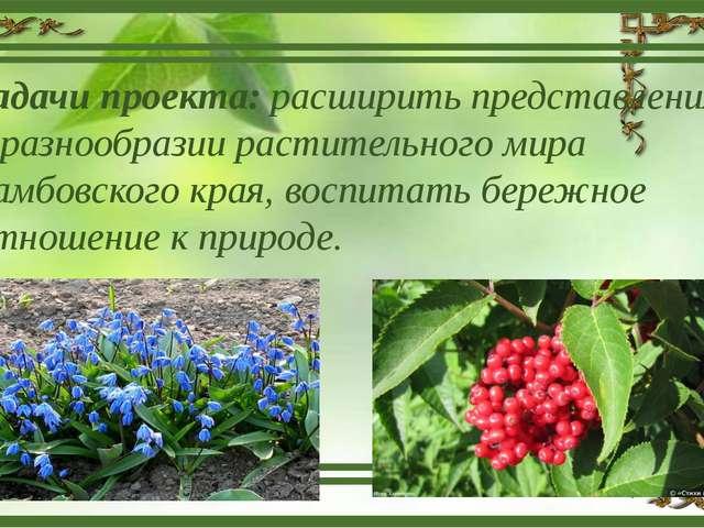 Задачи проекта: расширить представления о разнообразии растительного мира Там...