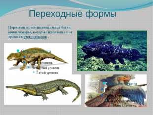 Переходные формы Первыми пресмыкающимися были котилозавры, которые произошли