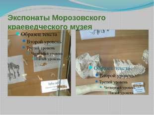 Экспонаты Морозовского краеведческого музея