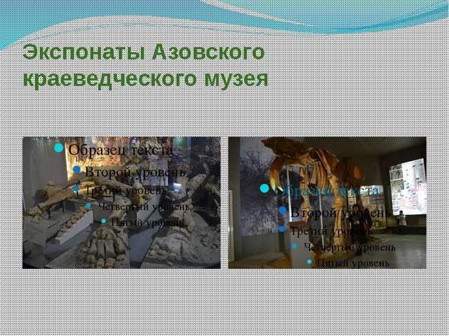 Экспонаты Азовского краеведческого музея