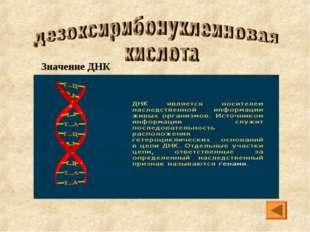 Значение ДНК