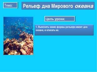 Тема: Рельеф дна Мирового океана Цель урока: