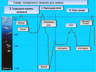 2. Переходная зона Котловина 1. Подводные окраины материков 200 5 000 3 000 1
