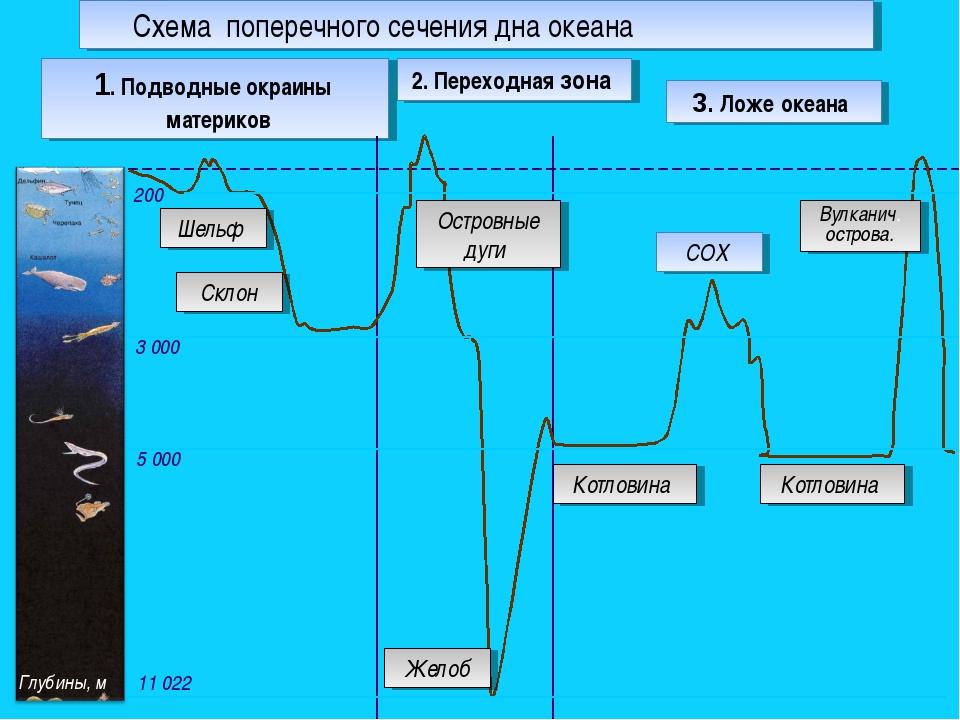 2. Переходная зона Котловина 1. Подводные окраины материков 200 5 000 3 000 1...