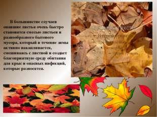 В большинстве случаев опавшие листья очень быстро становятся смесью листьев
