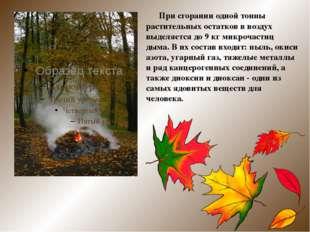 При сгорании одной тонны растительных остатков в воздух выделяется до 9 кг м