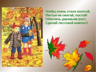 Чтобы осень стала золотой,  Листья не сжигай, постой! Обеспечь деревьям рос