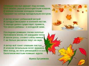 Опавшие листья шуршат под ногами, Всю землю, укрыв разноцветным ковром, И клё