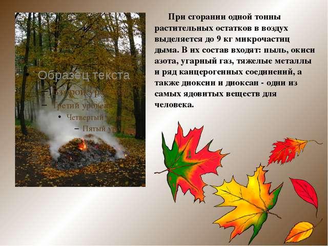 При сгорании одной тонны растительных остатков в воздух выделяется до 9 кг м...