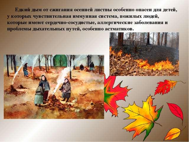Едкий дым от сжигания осенней листвы особенно опасен для детей, у которых чу...