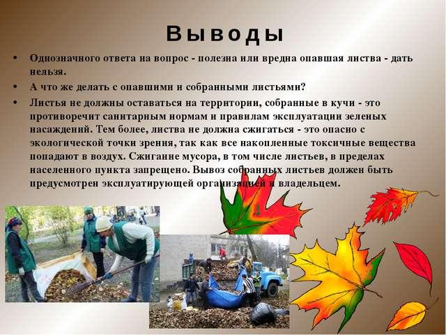 Однозначного ответа на вопрос - полезна или вредна опавшая листва - дать нель...