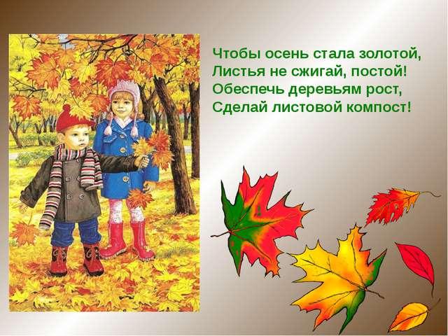 Чтобы осень стала золотой,  Листья не сжигай, постой! Обеспечь деревьям рос...