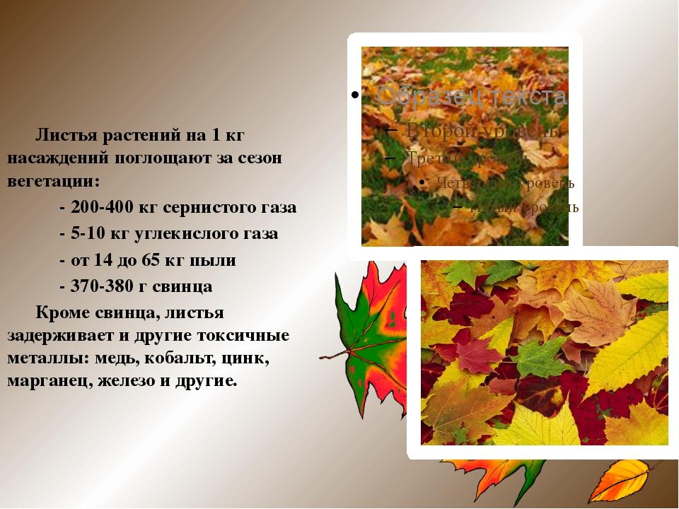 Листья растений на 1 кг насаждений поглощают за сезон вегетации: - 200-400 к...