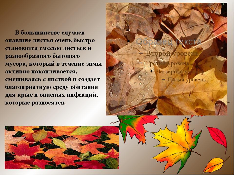 В большинстве случаев опавшие листья очень быстро становятся смесью листьев...