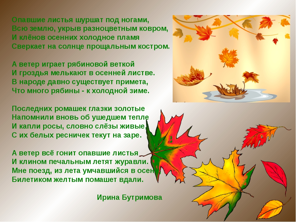 Опавшие листья шуршат под ногами, Всю землю, укрыв разноцветным ковром, И клё...