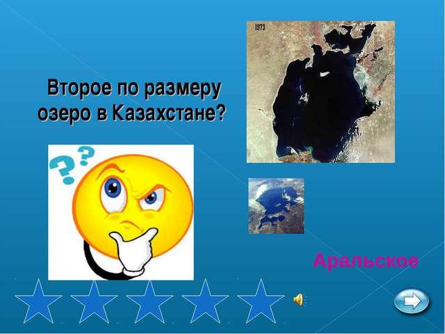 Второе по размеру озеро в Казахстане? Аральское
