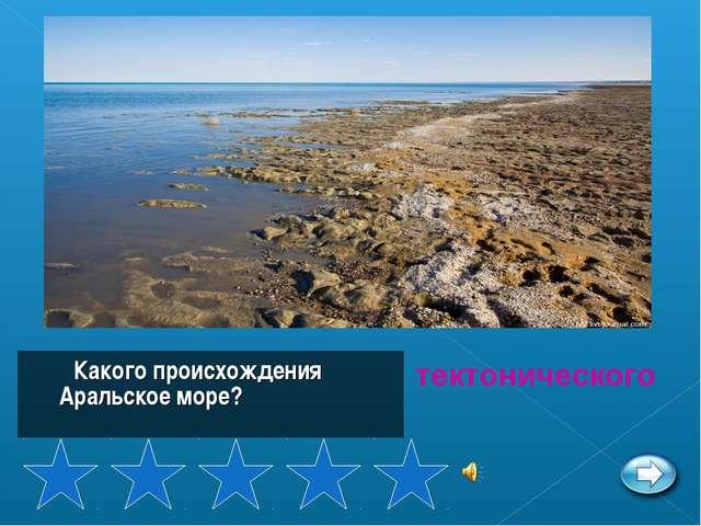 Какого происхождения Аральское море? тектонического