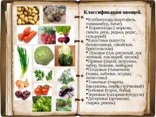 Классификация овощей. Клубнеплоды (картофель, топинамбур, батат). Корнеплоды