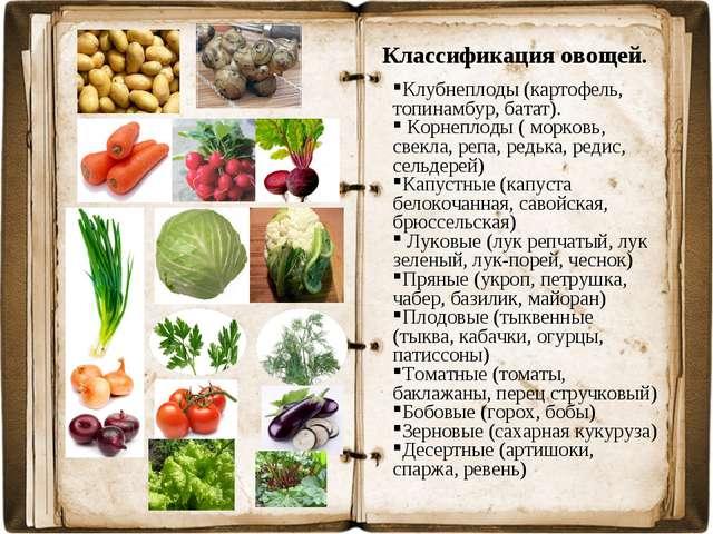 Классификация овощей. Клубнеплоды (картофель, топинамбур, батат). Корнеплоды...