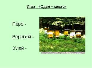 Игра «Один – много» Перо - Воробей - Улей -