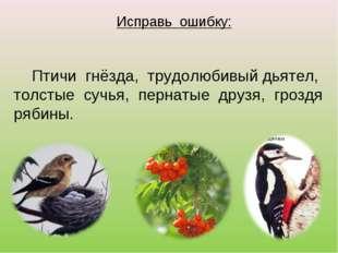 Исправь ошибку: Птичи гнёзда, трудолюбивый дьятел, толстые сучья, пернатые др