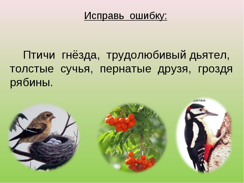 Исправь ошибку: Птичи гнёзда, трудолюбивый дьятел, толстые сучья, пернатые др...