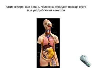 Какие внутренние органы человека страдают прежде всего при употреблении алког