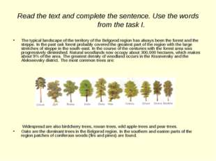 Read the text and complete the sentence. Use the words from the task I. The t