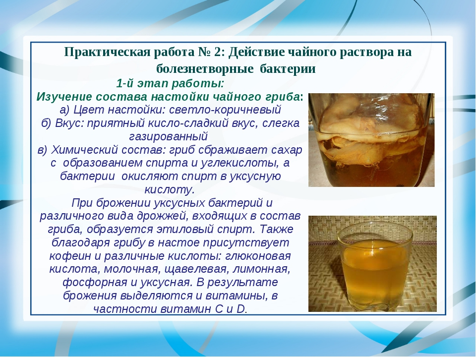Как сделать чайный гриб в домашних условиях фото 564