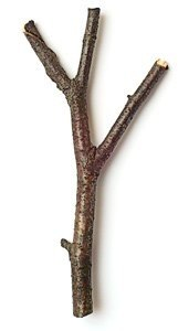 C:\Users\Чигинева М.Ю\DATE\мастер-классы\мастер классы\МК фисташковое дерево\9mmV9cOB6T0.jpg