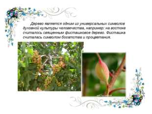 Дерево является одним из универсальных символов духовной культуры человечест