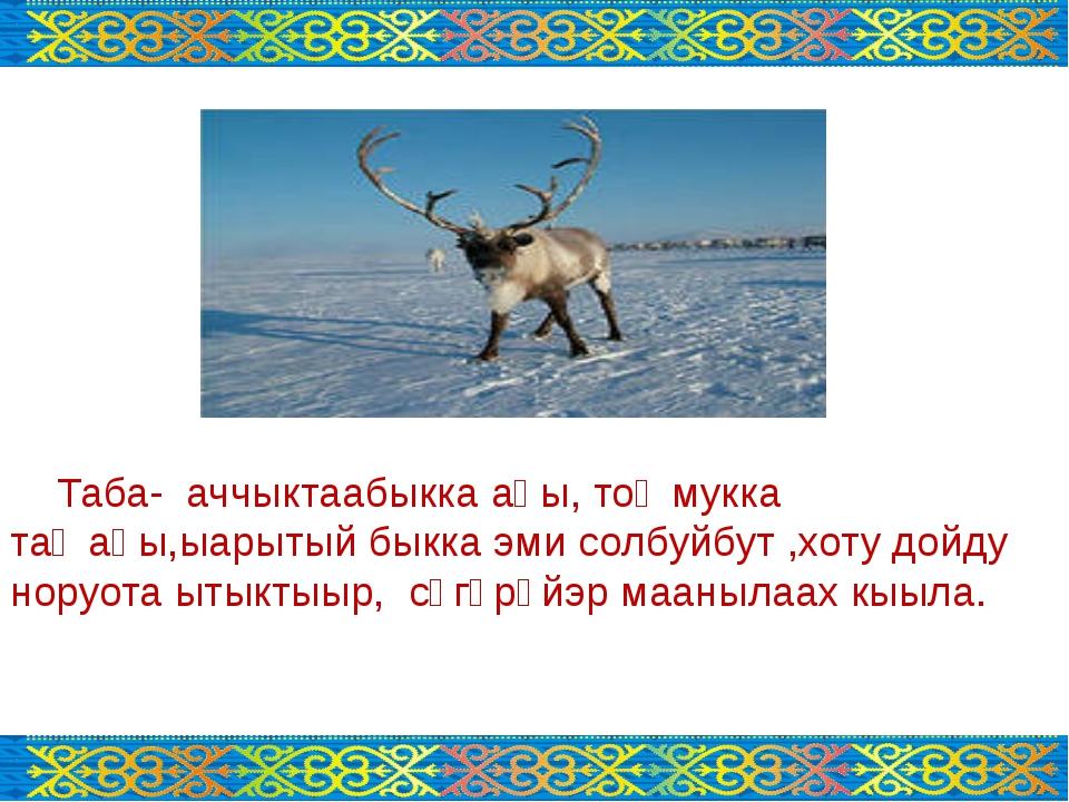 Таба- аччыктаабыкка аһы, тоҥмукка таҥаһы,ыарытый быкка эми солбуйбут ,хоту д...
