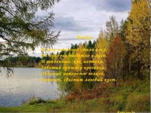 Ноябрь В лесу заметней стала елка, Он прибран засветло и пуст. И оголенный, к