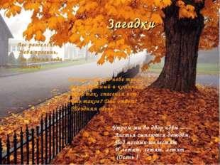 Лес разделся, Неба просинь, Это время года — ... (Осень) Солнца нет, на небе