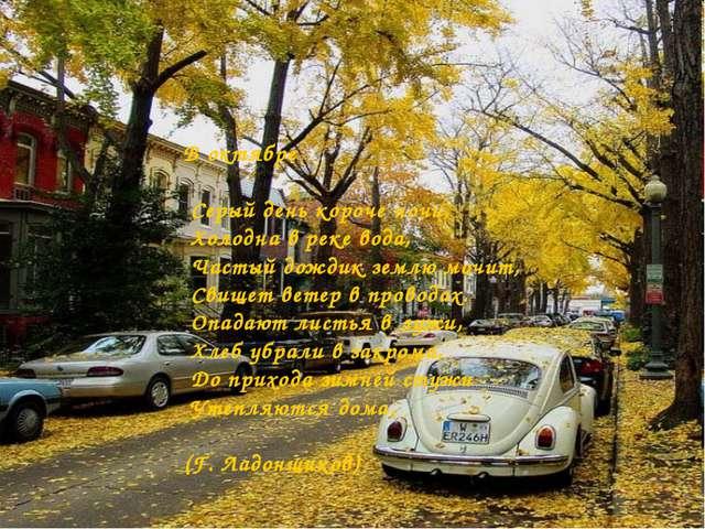 В октябре Серый день короче ночи, Холодна в реке вода, Частый дождик землю мо...