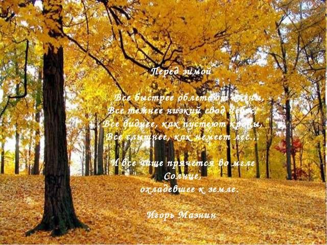 Перед зимой Все быстрее облетают клены, Все темнее низкий свод небес, Все вид...