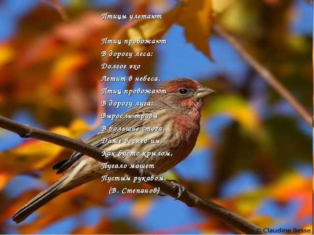 Птицы улетают Птиц провожают В дорогу леса: Долгое эхо Летит в небеса. Птиц п...