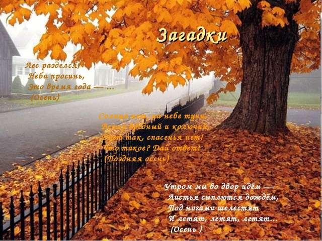 Лес разделся, Неба просинь, Это время года — ... (Осень) Солнца нет, на небе...