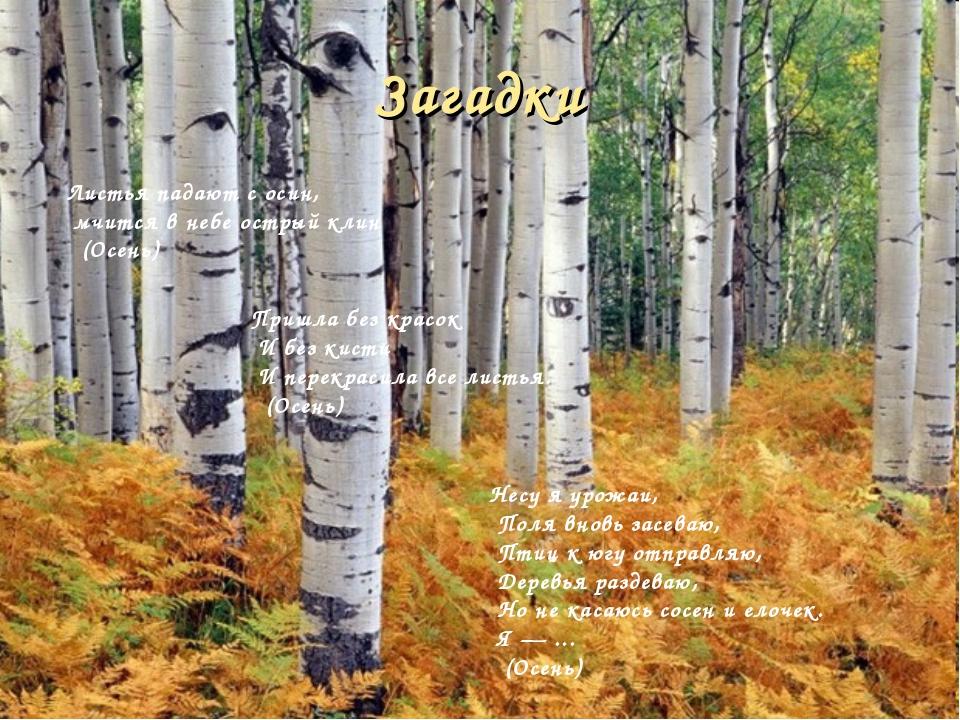 Загадки Листья падают с осин, мчится в небе острый клин (Осень) Несу я урожаи...