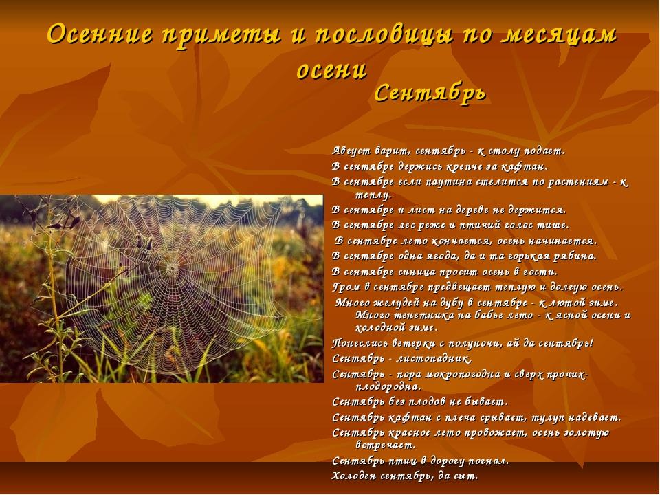 Осенние приметы и пословицы по месяцам осени Август варит, сентябрь - к столу...