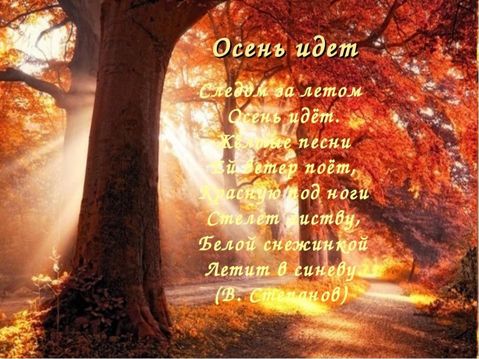 Осень идет Следом за летом Осень идёт. Жёлтые песни Ей ветер поёт, Красную...