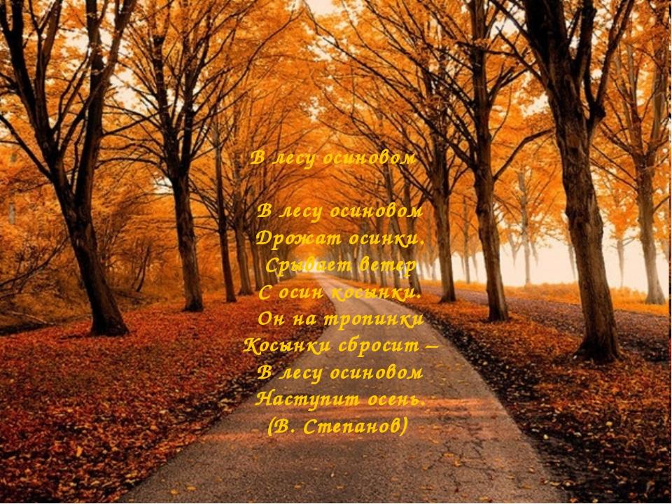 В лесу осиновом В лесу осиновом Дрожат осинки. Срывает ветер С осин косынки....