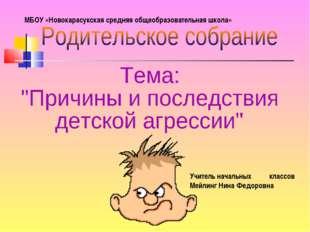 Учитель начальных классов Мейлинг Нина Федоровна МБОУ «Новокарасукская средня