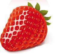 1231311686_red_apple_and_strawberry_vector