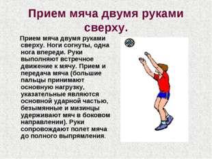 Прием мяча двумя руками сверху. Прием мяча двумя руками сверху. Ноги согнуты,