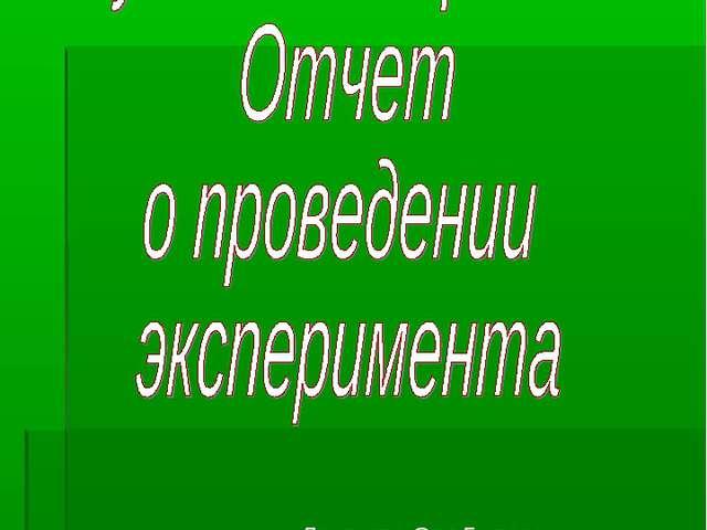 Школа №1 Лихачева Оля 5 класс